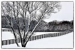 Ohio_Winter1.jpg