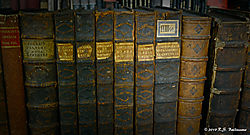 Old-Books--Theological-Hall_1_Color_PPW.jpg
