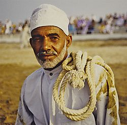 Oman_Bullfight_005.jpg