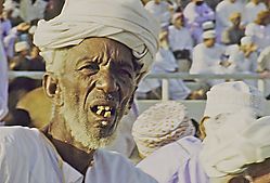 Oman_Bullfight_059.jpg