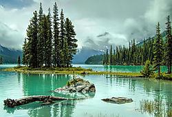 On_the_shore_of_Maligne_Lake.jpg