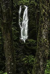Oregon_Waterfall1.jpg