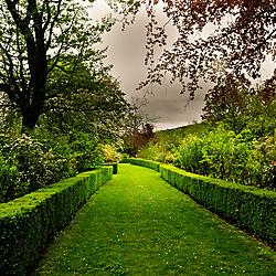 PALACE_OF_VERSAILLES_GARDEN_PATH_PARIS_FRANCE_V_12_05_1714LR.jpg