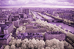 PARIS_FROM_ABOVE_2118.jpg