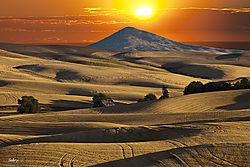 Palouse_fields_after_the_harvest.jpg