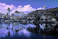 Park_at_Hilo_Bay.jpg