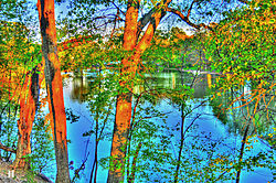 Park_lake_bright_HDR.jpg