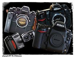 PhotoProgression_border.jpg