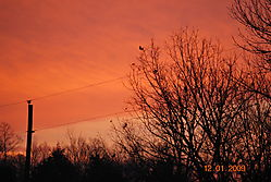 Picture_207.jpg
