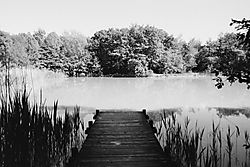 Pond_5.jpg