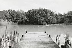 Pond_and_Wharf_1.jpg