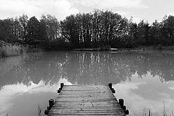 Pond_in_Leaf.jpg