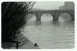 Pont_Neuf.jpg