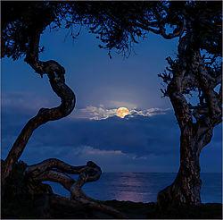 Predawn-Pacific-Moon_John-Straub-.jpg