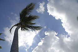 Punta_Cana_2009264.JPG