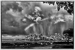 RAINBOW_SHOWERS_0059b.jpg