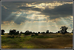 RAYS_FROM_HEAVEN_05-24-19_PS-F.jpg