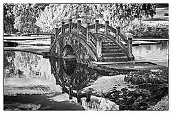 REFLECTING_BRIDGE_1145.jpg