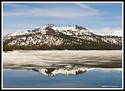 REFLECTIONS_CAPLES_LAKE_06-09-19_PS-F_copy.jpg