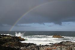 Rainbow_web.jpg