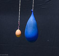 Raw_egg_and_balloon.jpg