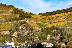 Rhine_for_Nikonians-4362.jpg