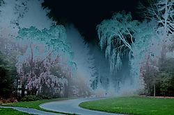 Road_into_the_Twilight_Zone.jpg
