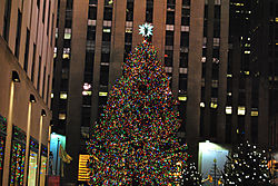 Rockefeller_Tree_1024_by_685.jpg