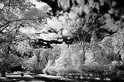 SKY_and_DRIVE.jpg