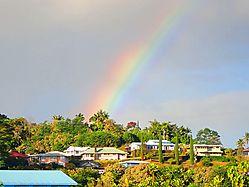 SUNDAY_Rainbow_90742.jpg