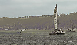 Sail-Boating-off-of-Harbor-Island--Croped-PPW.jpg
