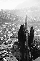 Sarajevo_Mosque_Verticle_with_Hill_Background_2400.jpg