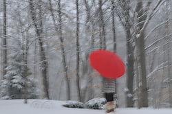 Snowy_Day.jpg