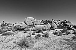 Split-Rock-in-Joshua-Tree-BW-PPW.jpg