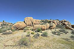 Split-Rock-in-Joshua-Tree-PPW.jpg