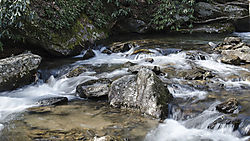 Stream_at_base_of_Anna_Ruby_Falls.jpg