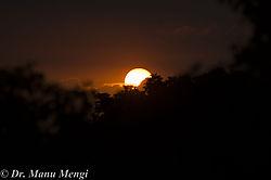 Sun-1396.jpg