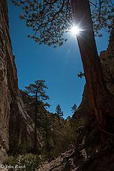 Sun_Burst_in_the_Canyon.jpg