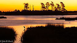 Sunrise_at_the_Marsh-4.jpg