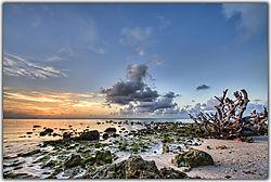 Sunset-007.jpg