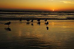 Sunset_1.jpg