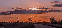 Sunset_Kruger_National_Park_1_of_1_.jpg