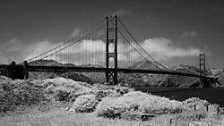 THE_GOLDEN_GATE_BRIDGE.JPG