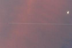 TIM_1096-dawn.jpg