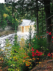 Tahquamenon_Upper_Falls.jpg