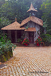 Thatched-Roof-Cottage-PPW.jpg