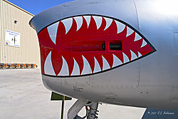 The-Teeth-of-an-F-86-Sabre-Jet_PPW.jpg