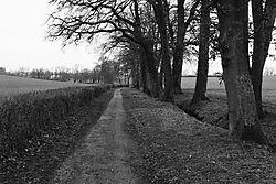 The_Bridle_Path_Collex.jpg