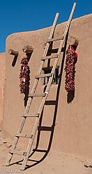 The_Ladder.jpg