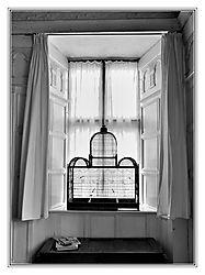 The_Window2.jpg